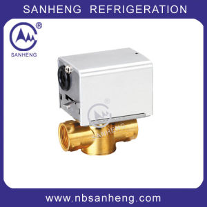 Good Quality AC Motorised Valve for Water pictures & photos