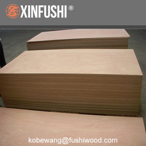 BS1088 Standard Marine Plywood pictures & photos