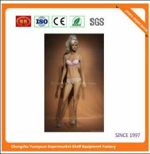 High Quality Fiberglass Mannequins Torso 1016 pictures & photos