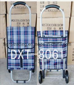 Stripe Polyester Styles Trolley Bag (DXT-8061)