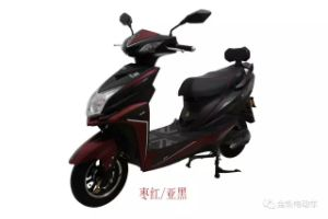 Smart Qualified Electric Scooters Motorbike 350W 800W (HD800-2) pictures & photos