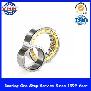 Cylindrical Roller Bearing (SL04 5004 PP 2NR)