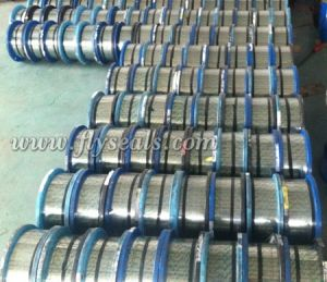 Flat Stainless Steel Strip for Spiral Wound Gasket Hoop pictures & photos