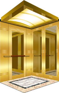 1350kg Mrl Home Lift with Golden Mirror Finish (XNK-009) pictures & photos