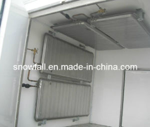 Refrigerated Truck Body (FRP Sandwich Panel) for Ice Cream Transportation pictures & photos