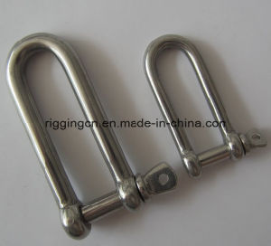 Stainless Steel Polished 304 316 European Dee Shackle pictures & photos