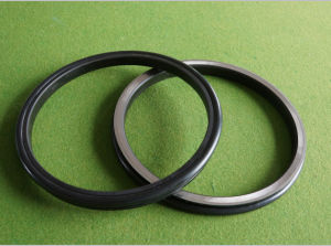 Floating Oil Seal Group (170-27-00020) pictures & photos