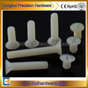 Flat Head Phillips Plastic Nylon Screw pictures & photos