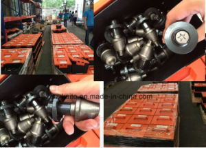W6/20X Picks for Wirtgen Road Milling Machine pictures & photos
