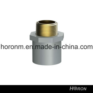 CPVC Sch80 Water Pipe Fitting (MALE THREAD COUPLING)