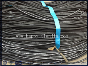 Two Wire Braid Oil Delivery Hose pictures & photos
