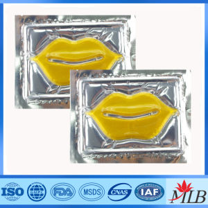 Factory Wholesale Professional Cosmetics Hydrogel Lip Masks for Slae pictures & photos