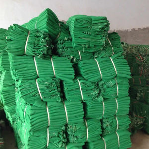 HDPE PVC Coated Polyester Green Construction Safety Net pictures & photos