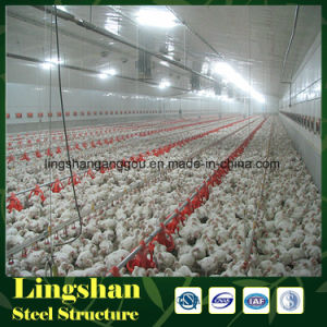Steel Prefabricated Building Poultry House pictures & photos