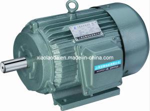 China Ip54 Nema Series Three Phase Asynchronous Electric