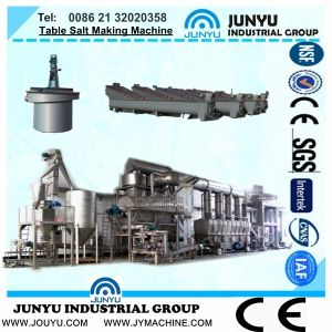 Full Automatic PLC Control Table Salt Making Machine