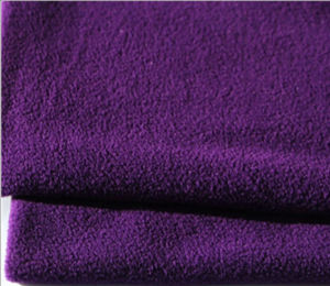 DTY 150d/144f 1 Side Anti-Piling Polar Fleece pictures & photos