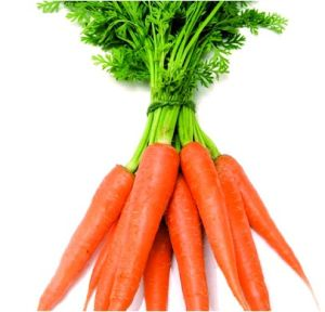 2015 High Quality Fresh Vegetables Carrot From Shandong Boren