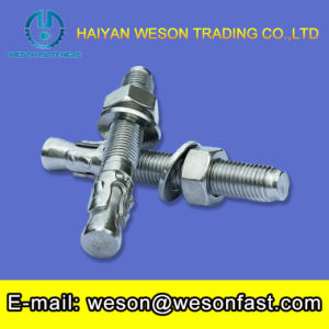 Wedge Anchors Small Construction Hardware Stainless Steel 304 Wedge Anchor pictures & photos