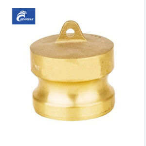 Brass Camlock Coupling Type DP pictures & photos