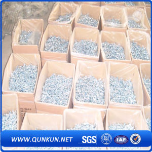 Galvanized Polished Common Nails with Factory Price pictures & photos