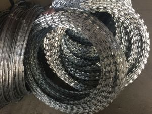 Hot Dipped Galvanzied Razor Wire Bto22 with Clips pictures & photos