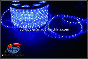 Blue High Quality 220V LED Rope Light with CE. GS, RoHS