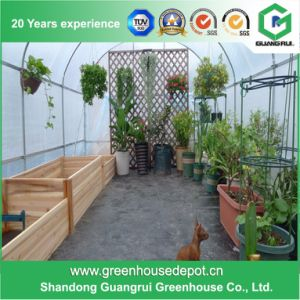 New Small Portable DIY Greenhouse Mini Home Greenhouse pictures & photos
