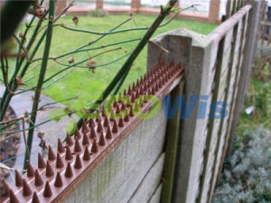 Lawn Yard Anti-Climb Spikes Fence pictures & photos