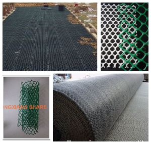 Ce121 Ce131 HDPE Geonet Green Color Black Color Ce Certificate pictures & photos