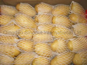 Fresh Potato with 150g&up, 200g&up, 300g&up pictures & photos