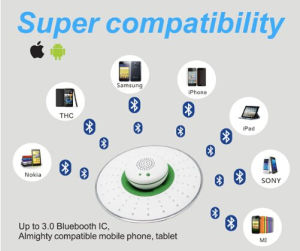 DC5V 500mA Shower Head Bathroom Bluetooth Audio Wireless Bluetooth Speaker pictures & photos