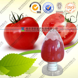 100% Natural Tomato Extract Lycopene pictures & photos