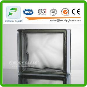 Standard Size Figtured Nautilus Glass Block/Glass Brick/ Glazed Tile/Vitrified Brick/Corner Glass Block/Shoulder Glass Brick pictures & photos