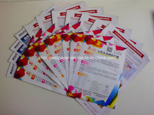 Shandong paper facotry selling Art Paper 80g pictures & photos