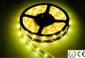 12V/24V 5050 SMD Strip LED Light LED pictures & photos