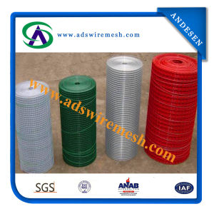 2.0/2.5mm 100mmx50mm Hot-DIP Galvanized&PVC Weld Wire Mesh pictures & photos