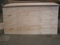 Radiata Pine Veneer Faced Plywood 2.5mm-18mm pictures & photos