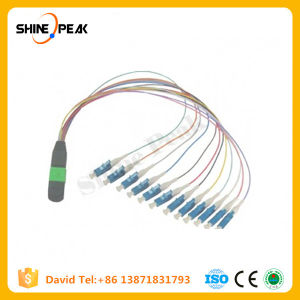 MTP Single Mode Fiber Optic Assembly Ribbon Cable 3m pictures & photos