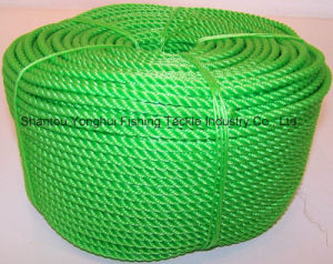 Green PE Rope pictures & photos
