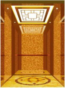 German Professional Vvvf Drive Home Villa Elevator (RLS-222) pictures & photos