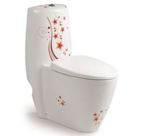 Multi Colour Washdown Toilet CE-T145f pictures & photos