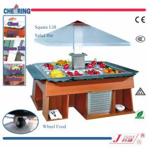 China Manufacturer Square Lift Salad Bar pictures & photos