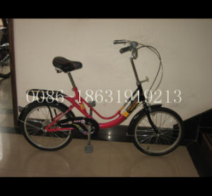 Ctiy Bicycle Steel Frame Lady Bike (HC-LD-2079) pictures & photos