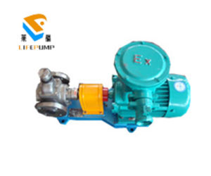 Ycb Marine Circular Arc Gear Oil Pump for Lube Oil pictures & photos
