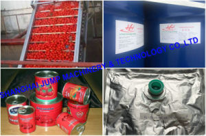 Xinjiang 36-38% Cold Break Tomato Paste pictures & photos
