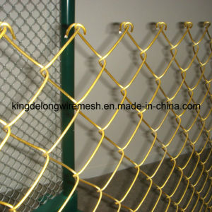 PVC Coated Galvanized Chain Link Mesh pictures & photos