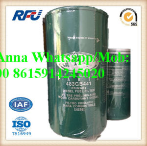 High Quality Fuel Filter Auto Parts for Mack/Renault (483GB444, 483GB219A) pictures & photos