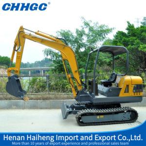 Mini Hydraulic Crawler Excavators pictures & photos