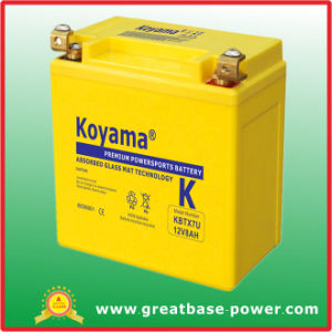 European Motorcycle Battery 12V 8ah pictures & photos